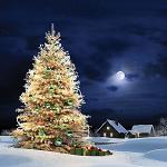 Новогодние песни под ёлкой