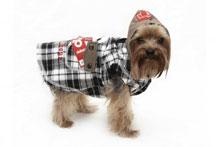 Мода для собак 4