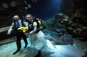 Необычная свадьба (фото №1)
