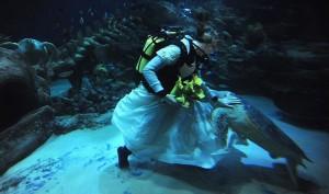 Необычная свадьба (фото №3)