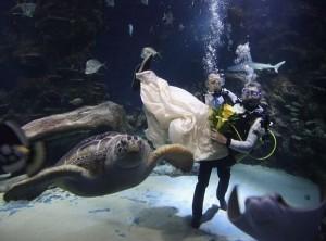 Необычная свадьба (фото №4)