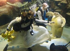 Необычная свадьба (фото №6)