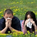 Аллергия на любовь