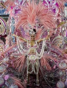 Карнавал в Бразилии 2011 (фото 13)
