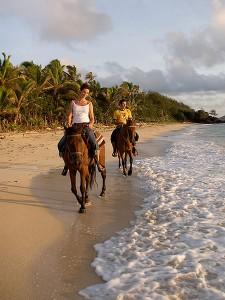 Незабываемая прогулка на лошадях