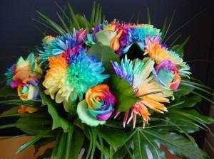 Выбор цветов по знаку зодиака