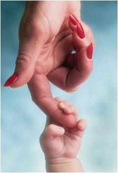 Основные признаки беременности