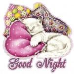Спокойной ночи на разных языках мира