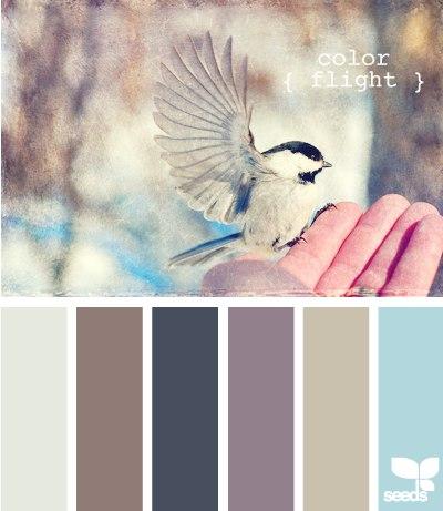 Цветовые схемы 11