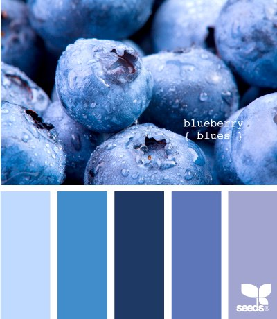Цветовые схемы 16