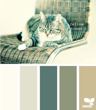 Цветовые схемы 21