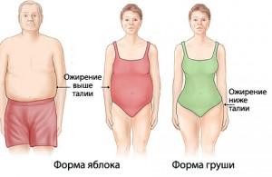 Типы фигуры женщины