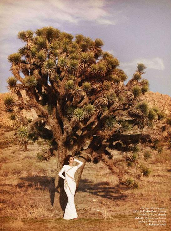 Синди Кроуфорд для Tatler's в Сентябре 2012 - фото 5