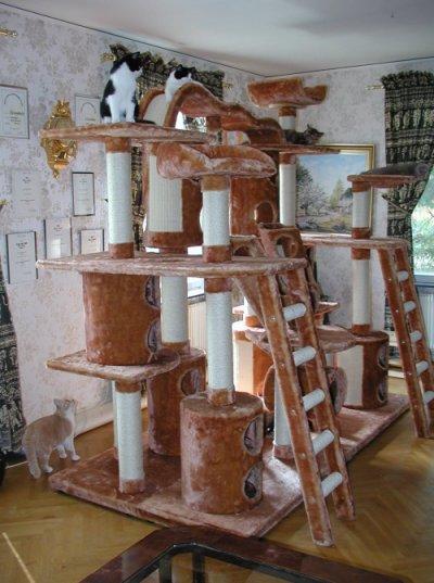 Домики для кошек - фото 11