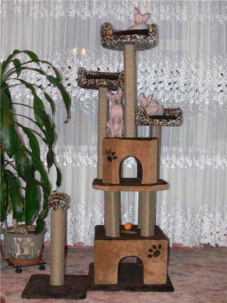 Домики для кошек - фото 8