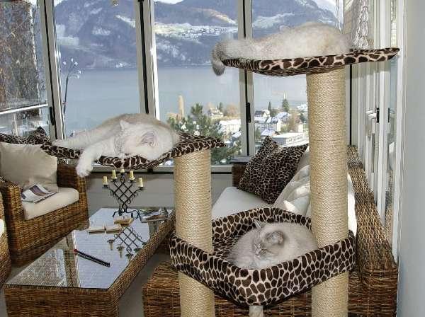 Домики для кошек - фото 23