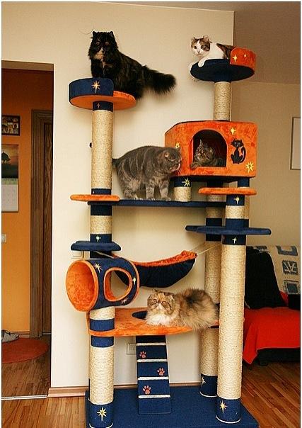 Домики для кошек - фото 12