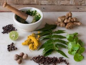 Народные рецепты лечения варикоза