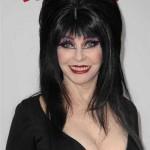 Прически на Хэллоуин - фото 32