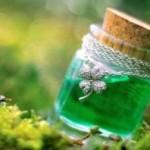 Ядовитые растения — могут ли они лечить