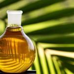 Вред реальный и выдуманный о пальмовом масле